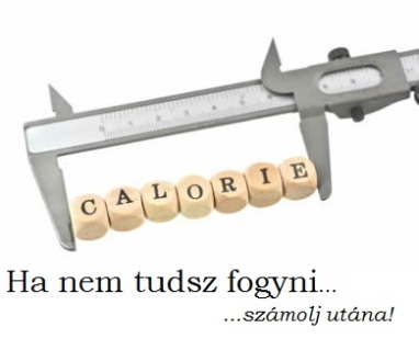 How_many_calories_should_I-_eat